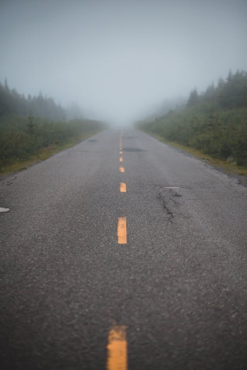 Perspective view of empty asphalt road going through green forest in countryside in foggy day
