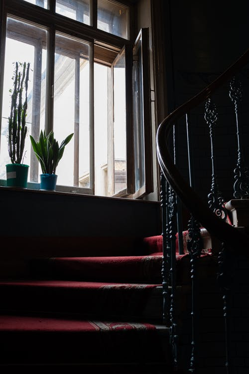 Black Staircase Near Green Potted Plant