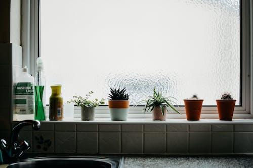 Základová fotografie zdarma na téma apartmán, barva, design interiéru, dům