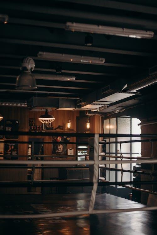 Imagine de stoc gratuită din antrenament, box, boxer