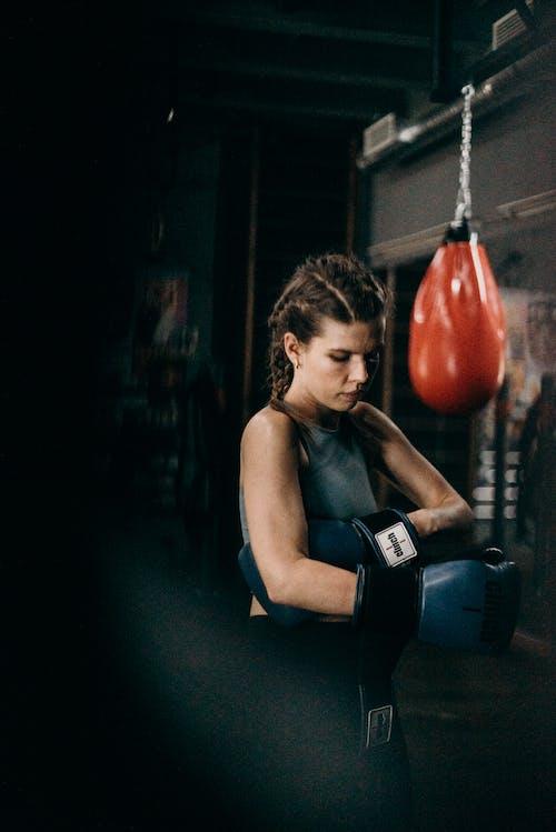 Photos gratuites de boxe, boxeur, compatible