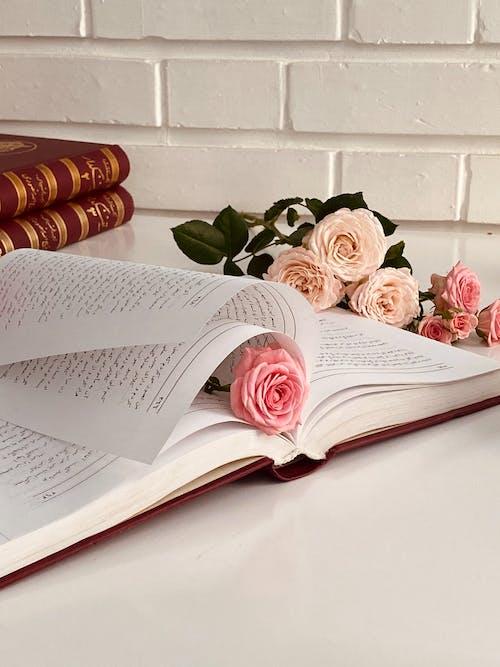 aranjman, aroma, bilgi, bitki içeren Ücretsiz stok fotoğraf