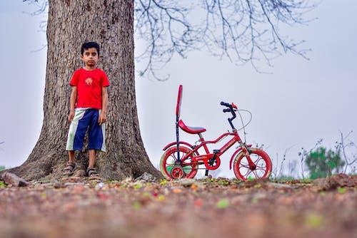 Free stock photo of alone, bike riding, boy