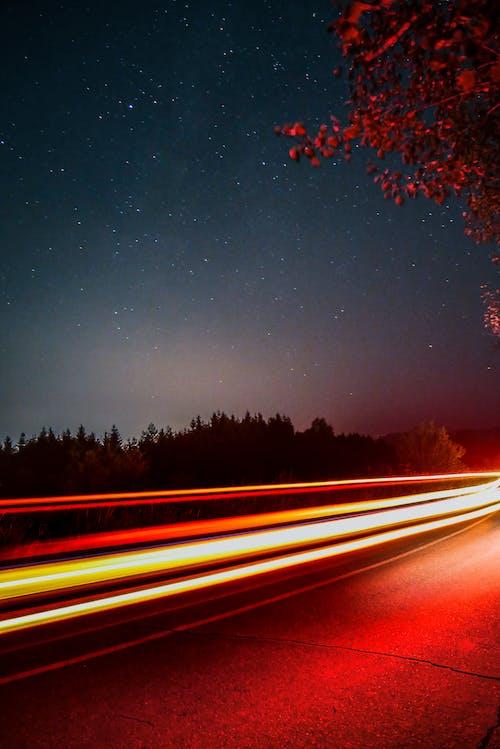 Photos gratuites de arbre, astrophotographie, célébrités