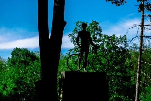 Photos gratuites de arbres, bicyclette, ciel