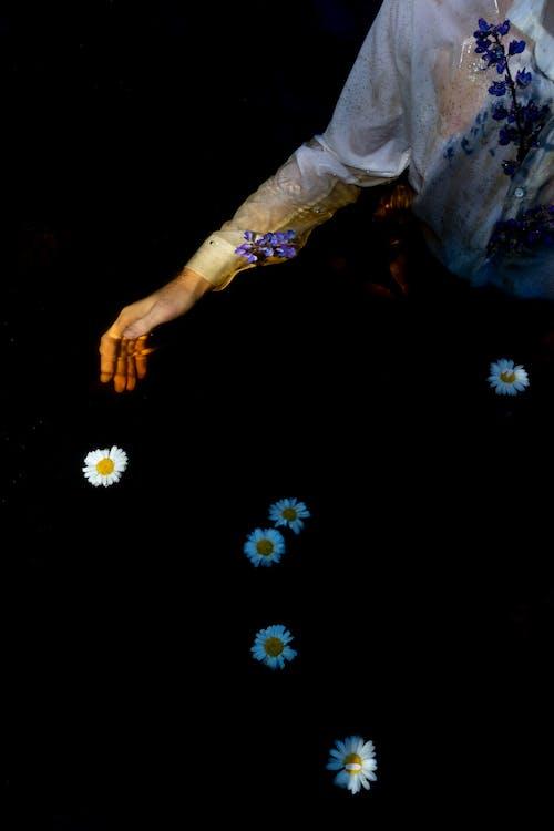 Foto stok gratis abstrak, bulan, bunga, cahaya