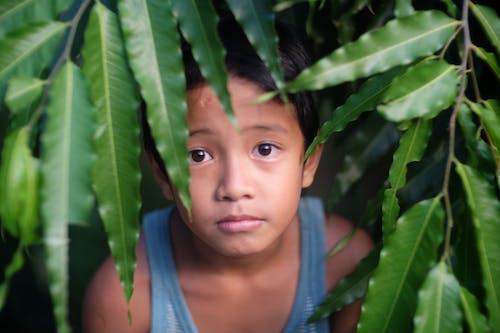 Free stock photo of child, children, eyes, face