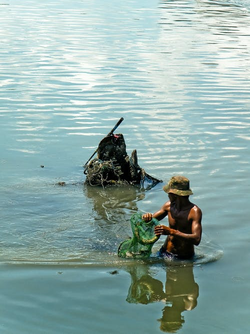 Free stock photo of climate change, dirt, fish, fishing