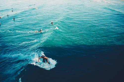 Imagine de stoc gratuită din semn cu mâna, surf, surferi