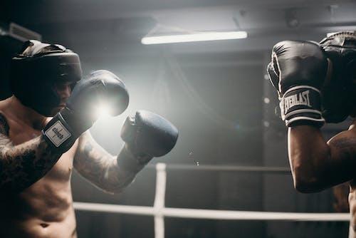 Foto profissional grátis de academia de ginástica, atividade física, bem-estar, boxe