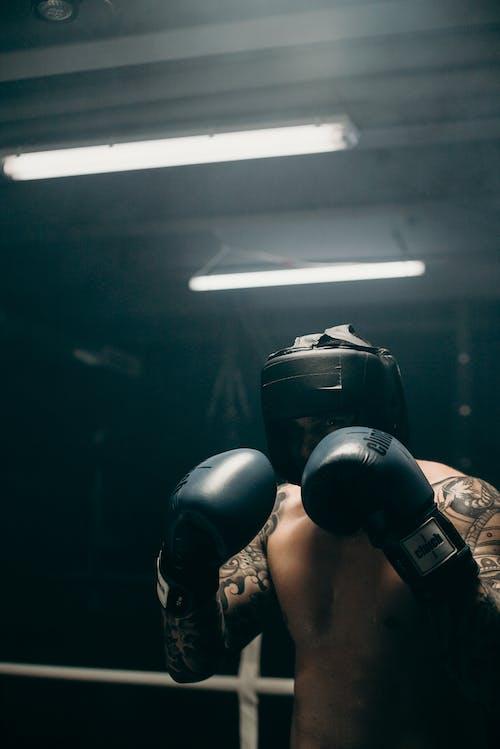 Foto profissional grátis de academia de ginástica, atleta, atlético, boxe