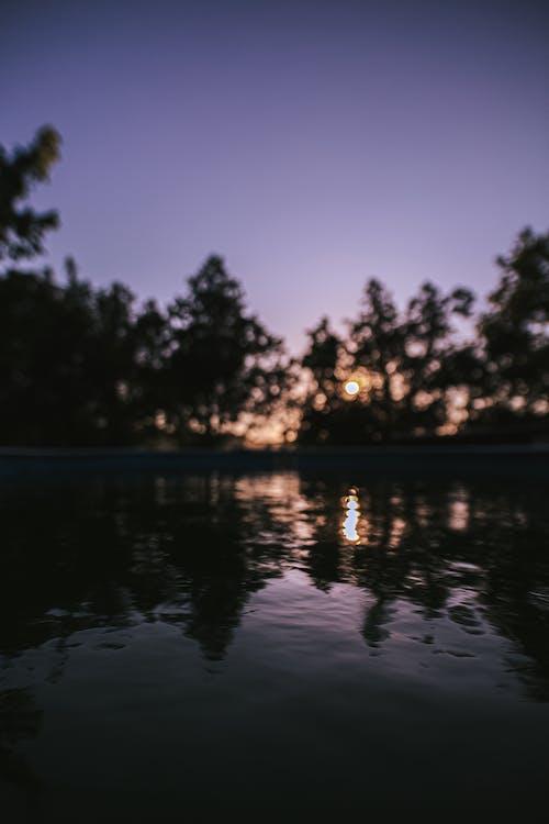 冷靜, 反射, 和平的 的 免費圖庫相片