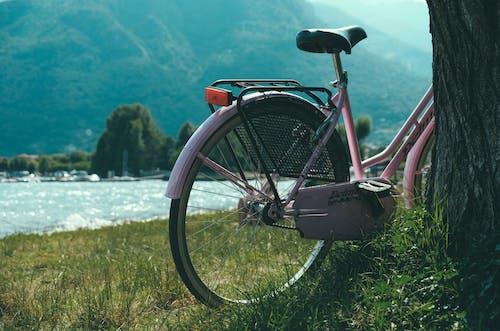 açık hava, araç, bisiklet, bisikletçi içeren Ücretsiz stok fotoğraf
