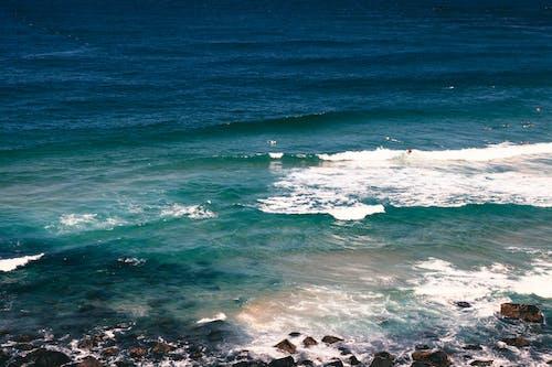 Kostnadsfri bild av blå, hav, havsområde