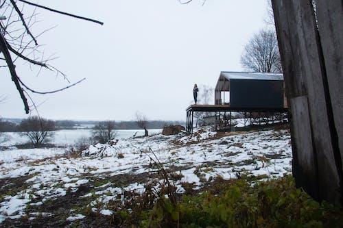 Gratis stockfoto met achtergelaten, bevroren, boom, h2o