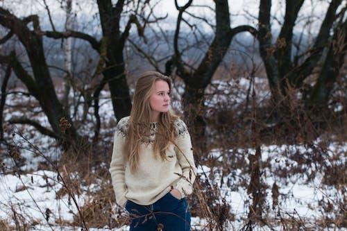 Foto profissional grátis de amor, ao ar livre, árvore, com frio