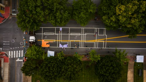 Top view of road with bright marking lines between lush green trees in town