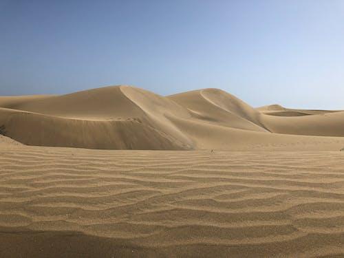 Immagine gratuita di ambiente, arido, carta da parati del deserto