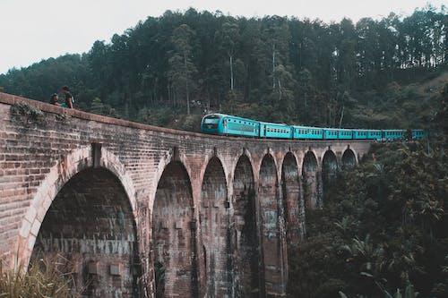 スリランカ, トレノ, トレノスポンテ, トレノポンテの無料の写真素材
