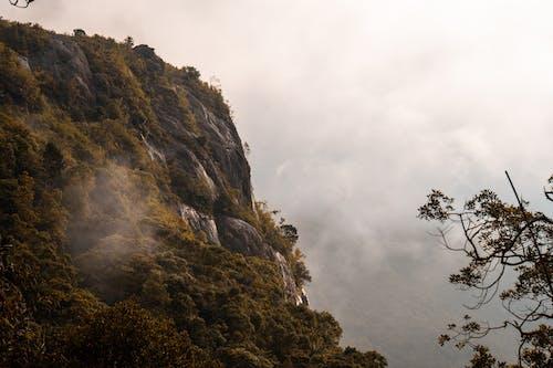 アダムスピーク, スリランカ, 自然の無料の写真素材