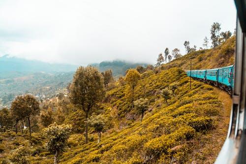スリランカ, スリランカの列車, 列車の無料の写真素材