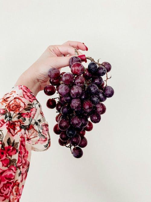 Základová fotografie zdarma na téma bobule, džus, hrozen, hrozny