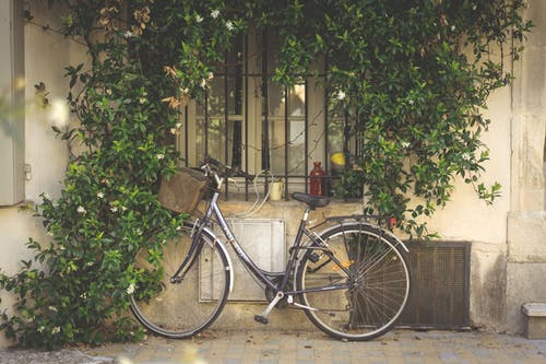 Gratis stockfoto met antiek, architectuur, arles, blad