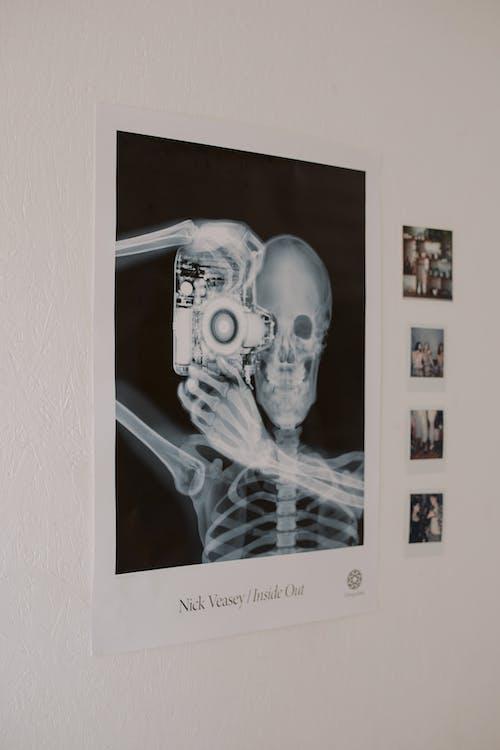 Foto profissional grátis de apartamento, cartaz, caveira