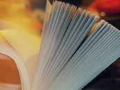 book, paper, novel