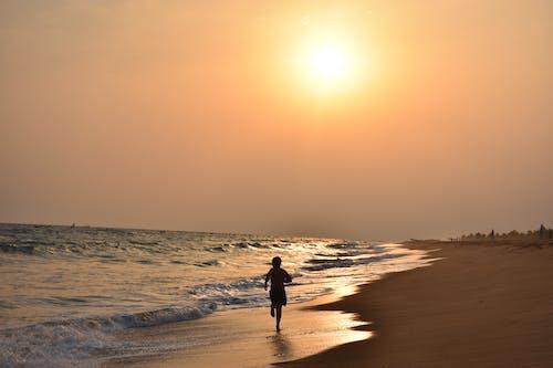 Free stock photo of coast, ocean, run, sunset