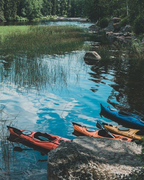 Free stock photo of forest, kayak, lake