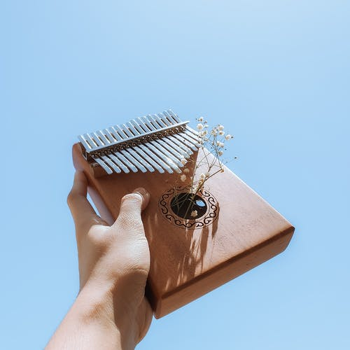 Person Holding Brown and White Book