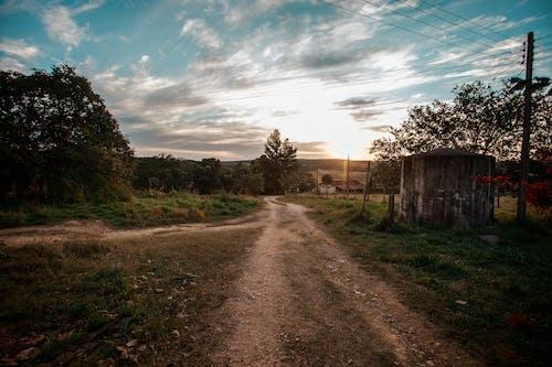 açık, ağaç, ahşap, Çiftlik içeren Ücretsiz stok fotoğraf