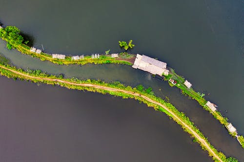 Безкоштовне стокове фото на тему «Безхребетні, берег моря, вода, Водний транспорт»