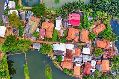 Безкоштовне стокове фото на тему «архітектура, Будівля, вода, дерево»
