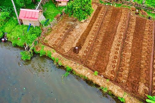 Безкоштовне стокове фото на тему «басейн, більярд, вода, ґрунт»