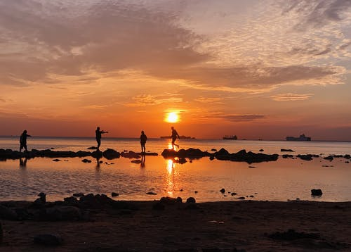 People silhouettes walking on beach at picturesque sunset