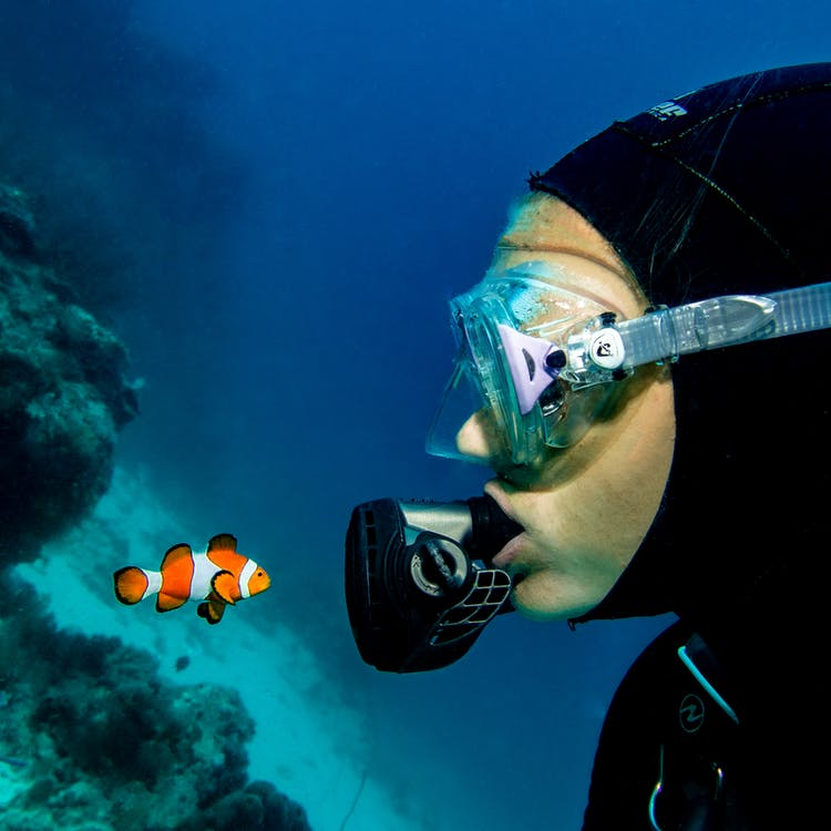 Person in Black and White Goggles and Goggles Under Water