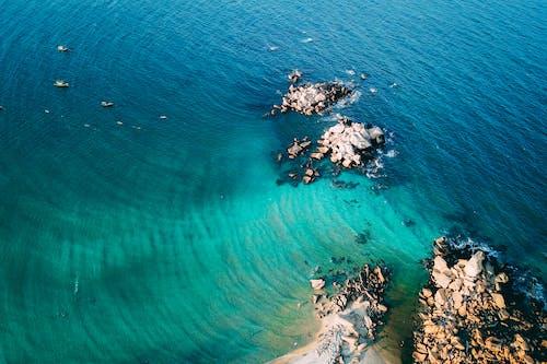 Gratis stockfoto met blauwgroen, buiten, buitenshuis, duiken