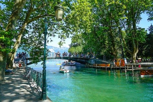 Photos gratuites de annecy, arbre, bateau, bateaux