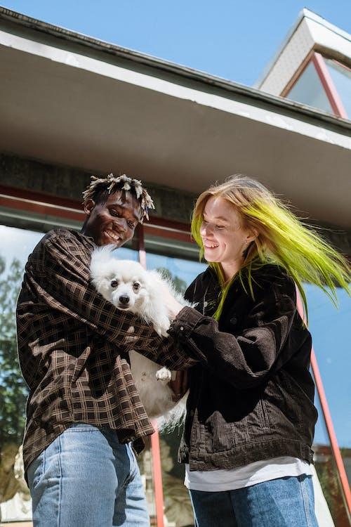 Ingyenes stockfotó afro-amerikai, élvezi, fehér kutya, Férfi témában