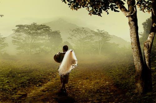 คลังภาพถ่ายฟรี ของ คน, ชาวประมง, ต้นไม้, ตะไคร่น้ำ