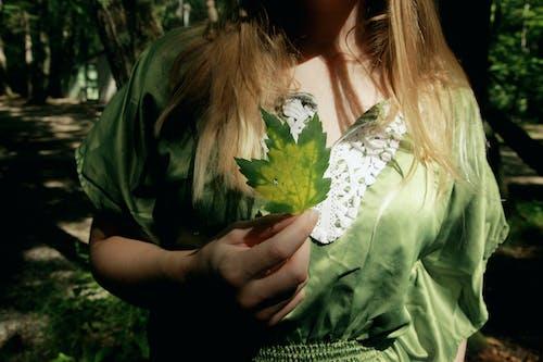 Imagine de stoc gratuită din adult, arbore, artă