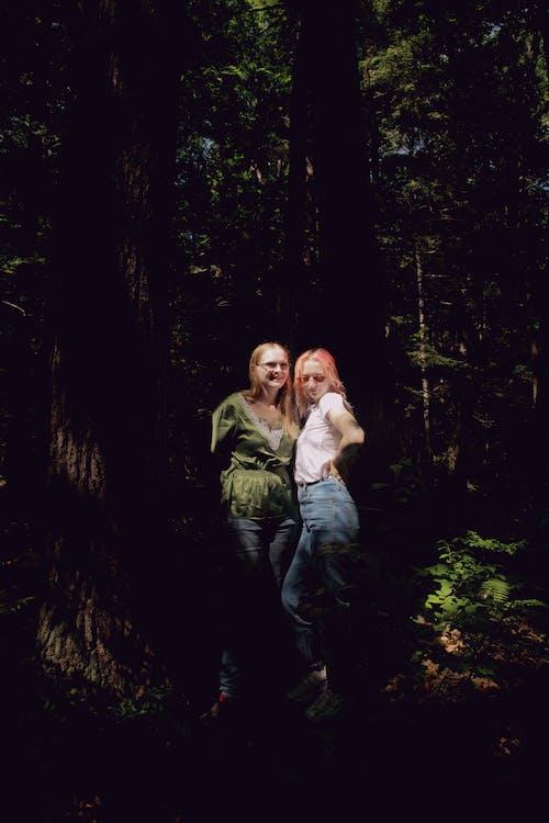 Imagine de stoc gratuită din aventură, camping, cei mai buni prieteni