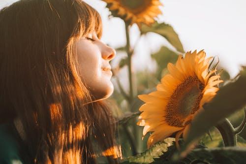 Foto d'estoc gratuïta de a l'aire lliure, bonic, cabell, cabells