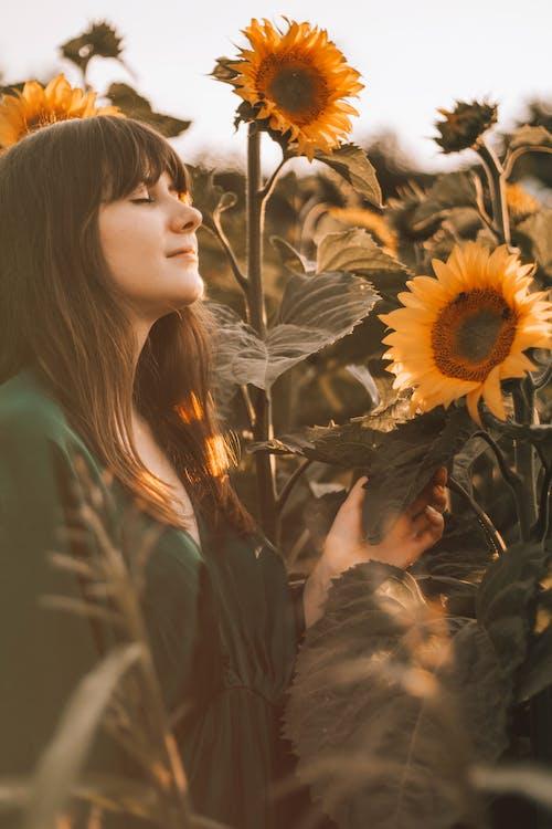 Foto d'estoc gratuïta de a l'aire lliure, adult, amor, capvespre