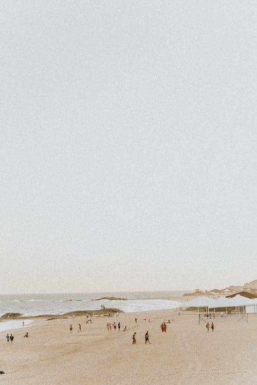 人, 假期, 夏天 的 免费素材图片