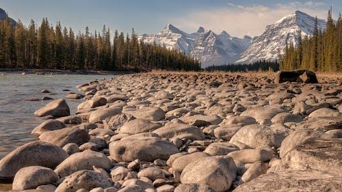 Základová fotografie zdarma na téma Alberta, athabasca, cestovní ruch, dobrodružství