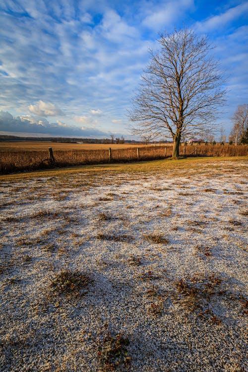 Základová fotografie zdarma na téma hřiště, mraky, podzim, pole