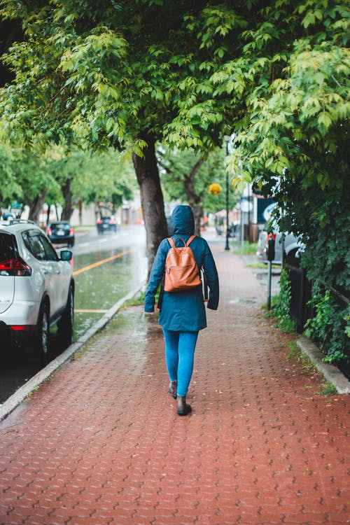 Back view of unrecognizable female tourist with backpack strolling on pavement near green trees on rainy day
